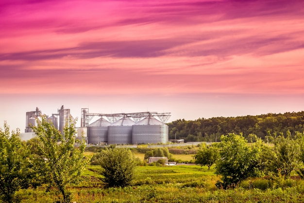 Moderne onderneming in de buurt van het bos in de ochtend tijdens de zonsopgang. zomer industrieel landschap in een milieuvriendelijke omgeving Premium Foto