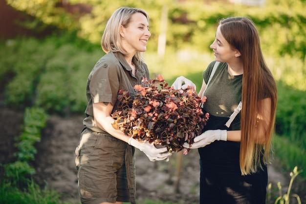 Moeder met een dochter werkt in een tuin in de buurt van het huis Gratis Foto