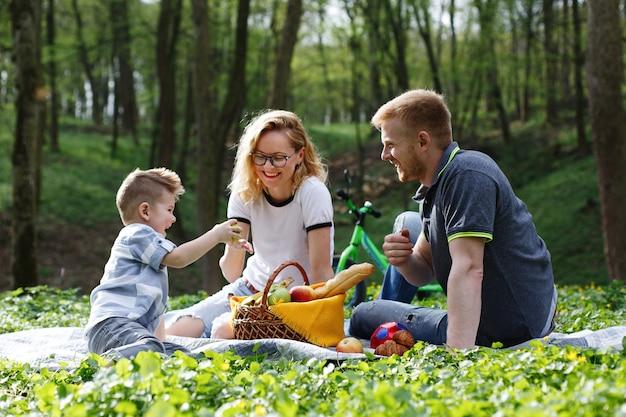 Moeder, vader en een kleine jongen proeven appels zittend op het gras tijdens een picknick in het park Gratis Foto