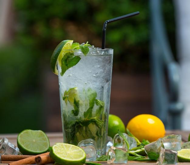Mojito cocktailglas met ijsstukken, verse muntblaadjes en limoenplakken met buis Gratis Foto