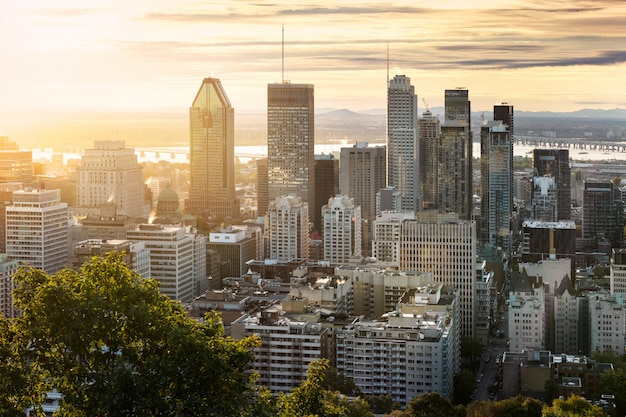 Montreal skyline van mont royal Premium Foto