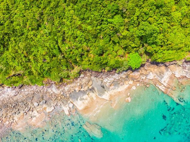 Mooi aard tropisch strand en overzees met kokosnotenpalm op paradijseiland Gratis Foto