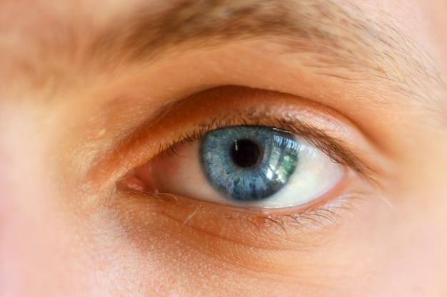 Mooi blauw oogclose-up, heldere ogen Premium Foto