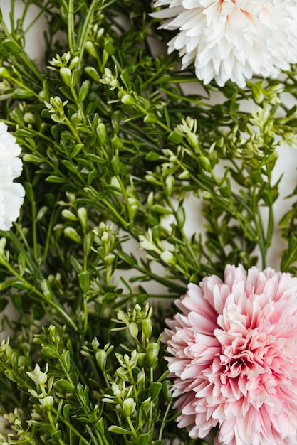 Mooi bloemen bovenaanzicht als achtergrond Gratis Foto