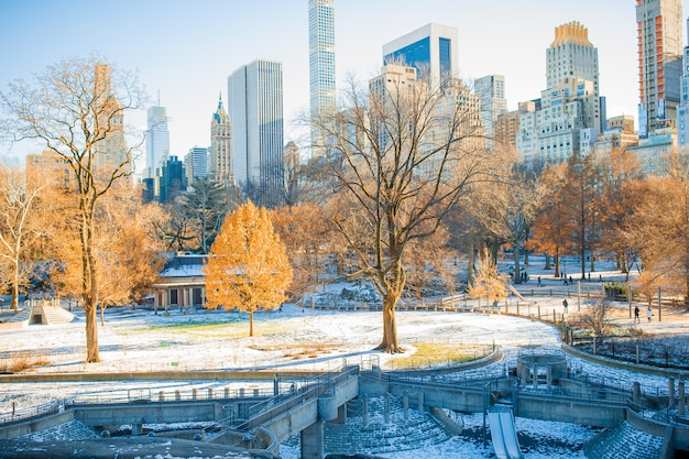 Mooi central park in de stad new york Premium Foto