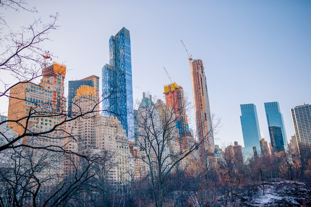 Mooi central park in de stad new york Premium Foto