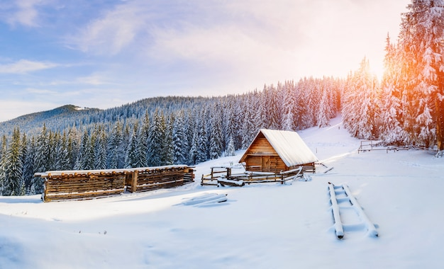 Mooi houten huis Premium Foto