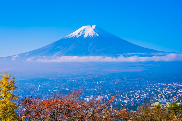 Mooi landschap van berg fuji rond de boom van het esdoornblad in de herfst Gratis Foto