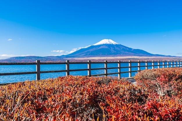 Mooi landschap van bergfuji rond yamanakakomeer Gratis Foto