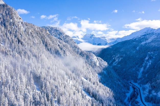 Mooi landschap van een bos met veel bomen in de winter in de zwitserse alpen, zwitserland Gratis Foto