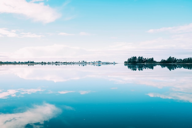 Mooi landschap van een reeks bomen die in het meer onder de bewolkte hemel nadenken Gratis Foto