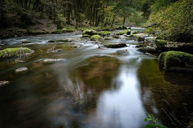 Mooi landschap van een rivier met veel rotsformaties bedekt met mos in het bos Gratis Foto