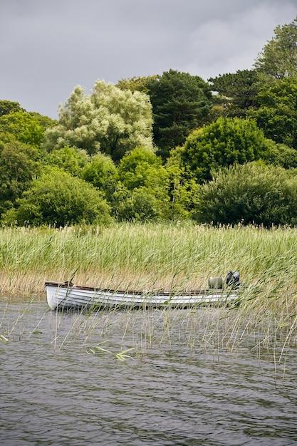 Mooi landschap van geparkeerde boot in killarney national park Gratis Foto