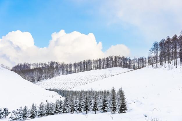 Mooi openluchtaardlandschap met boom in sneeuwwintertijd in hokkaido Gratis Foto