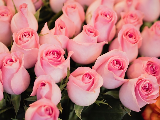 Mooi roze boeket rozen Gratis Foto