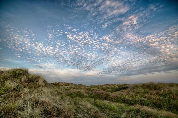 Mooi schoot een veld op een heuvel onder de bewolkte hemel Gratis Foto