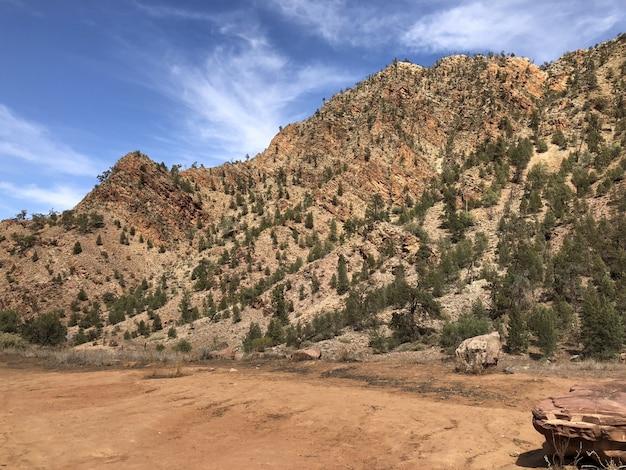 Mooi schot van bergen bedekt met bomen met een blauwe bewolkte hemel Gratis Foto