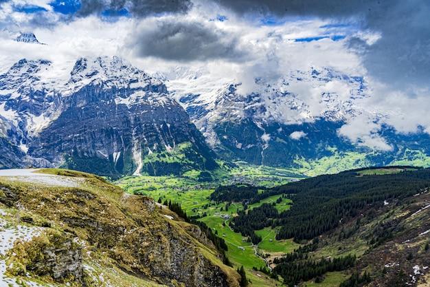 Mooi schot van de sneeuwalpen en groene valleien in grindelwald, zwitserland Gratis Foto
