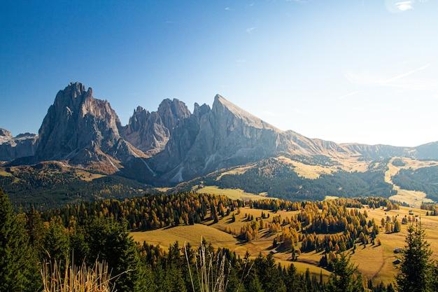 Mooi schot van het dolomiet met bergen en bomen onder een blauwe hemel in italië Gratis Foto