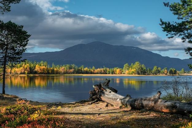 Mooi schot van natuurlijk landschap in de herfst Gratis Foto