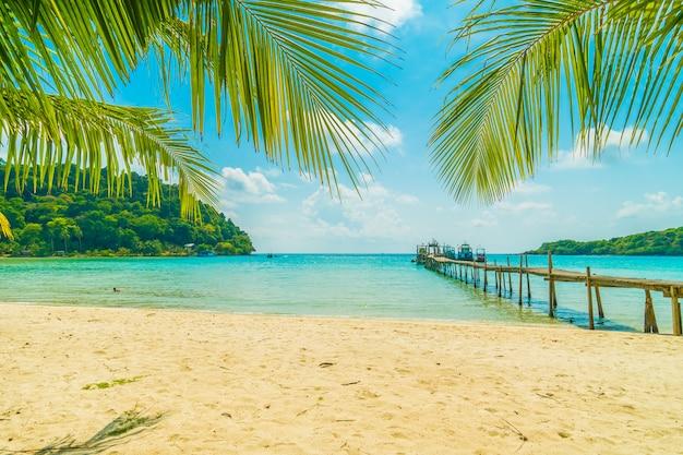 Mooi tropisch strand en zee met kokosnotenpalm in paradijseiland Gratis Foto