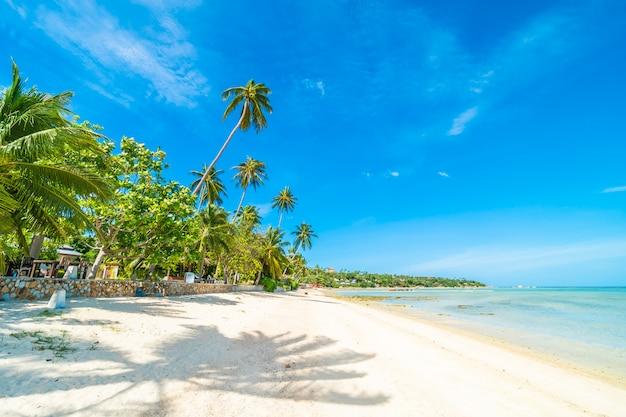 Mooi tropisch strandoverzees en zand met kokosnotenpalm op blauwe hemel en witte wolk Gratis Foto