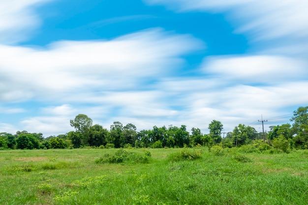 Mooi uitzicht op de lucht en groen op het platteland Premium Foto