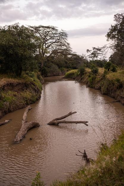 Mooi verticaal schot van een modderige rivier die door de wildernis in ol pejeta, kenia gaat Gratis Foto