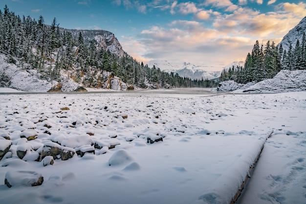 Mooi winterlandschap in een bos dat door heuvels onder de bewolkte hemel wordt omringd Gratis Foto