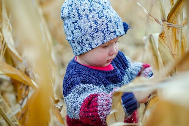 Mooie baby in warme stijlvolle trui staande in het midden van maïsveld Premium Foto