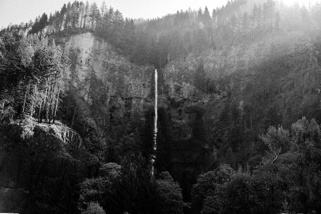 Mooie brede long shot van een lange dunne waterval in het bos bij multnomah falls, verenigde staten Gratis Foto