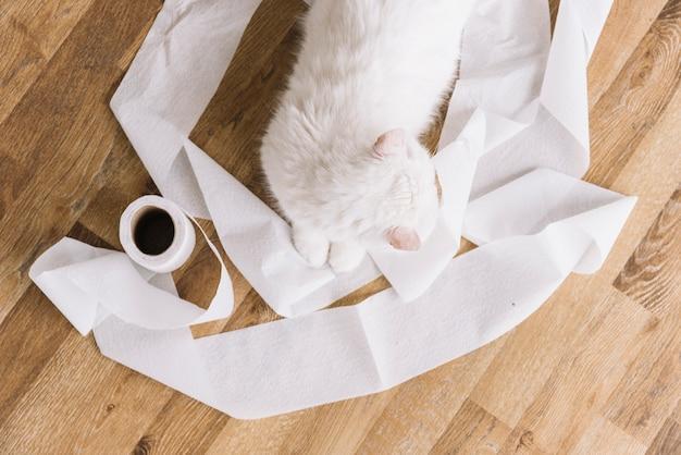 Mooie huisdierensamenstelling met slaperige witte kat Gratis Foto