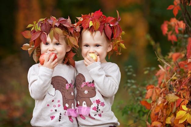Mooie kleine tweelingmeisjes die appelen in de de herfsttuin houden. Premium Foto
