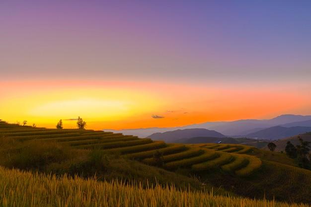 Mooie landschapsmening van rijstterrassen in chiang mai, thailand. Premium Foto