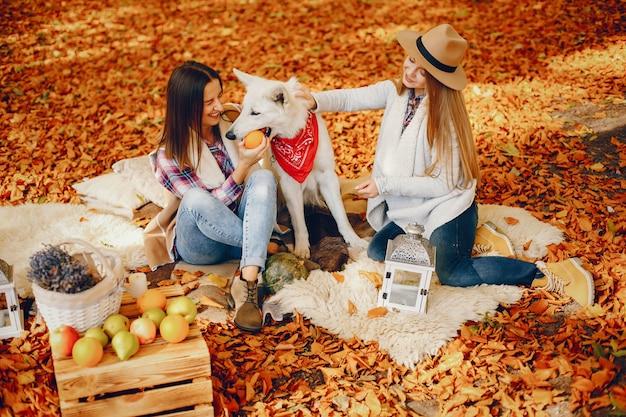 Mooie meiden hebben plezier in een herfstpark Gratis Foto