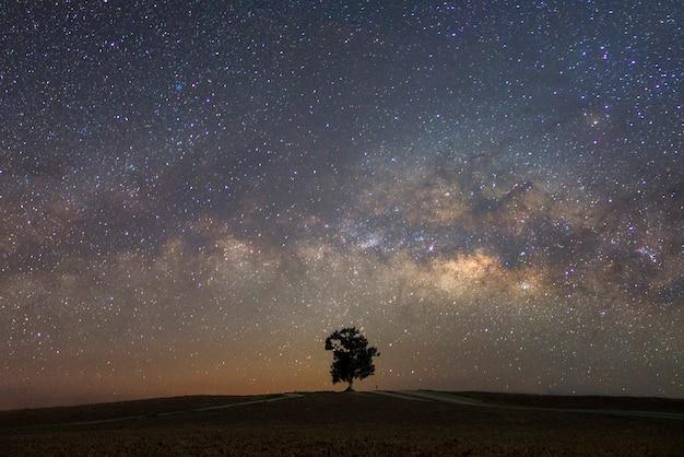 Mooie melkweg met een enkele boomrug. landschap met nachtelijke sterrenhemel en een boom op heuvel Premium Foto