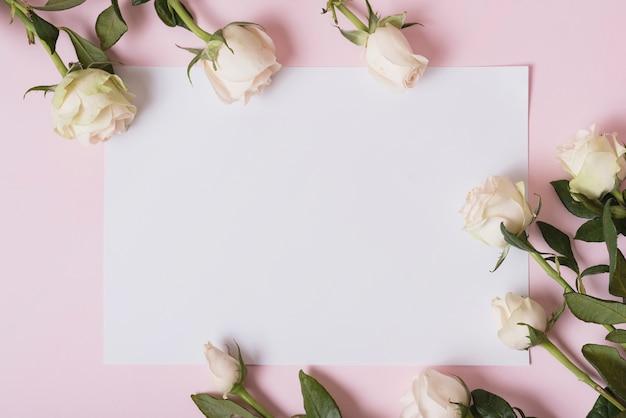 Mooie rozen op blanco papier tegen roze achtergrond Gratis Foto
