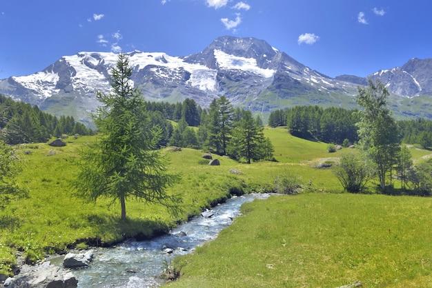Mooie schilderachtige ladscape in alpiene berg sneeuw en groen weide met een kleine rivier Premium Foto