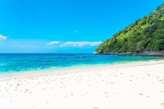 Mooie tropische strand overzeese oceaan met kokosnoot en andere boom rond witte wolk op blauwe hemel Gratis Foto