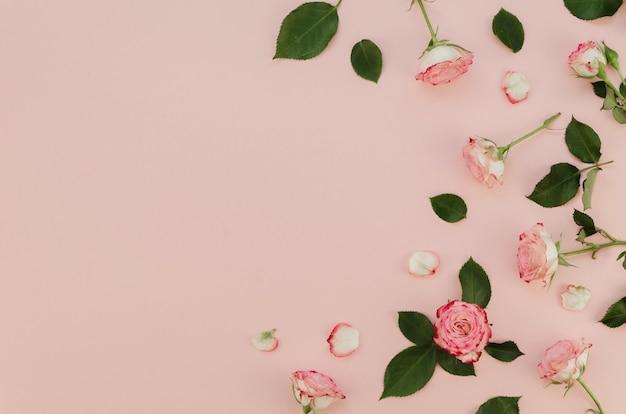 Mooie verse rozen met kopie ruimte Gratis Foto