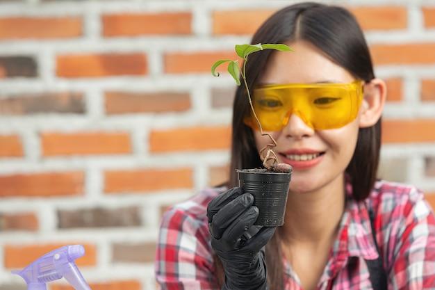 Mooie vrouw die lacht tijdens het kweken van planten Gratis Foto