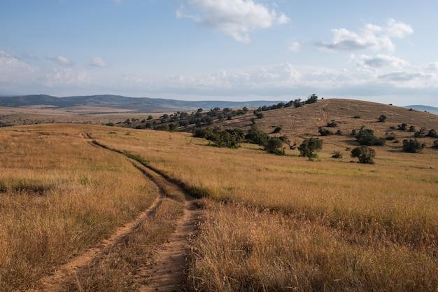 Mooie weg door de velden onder de blauwe lucht in kenia Gratis Foto