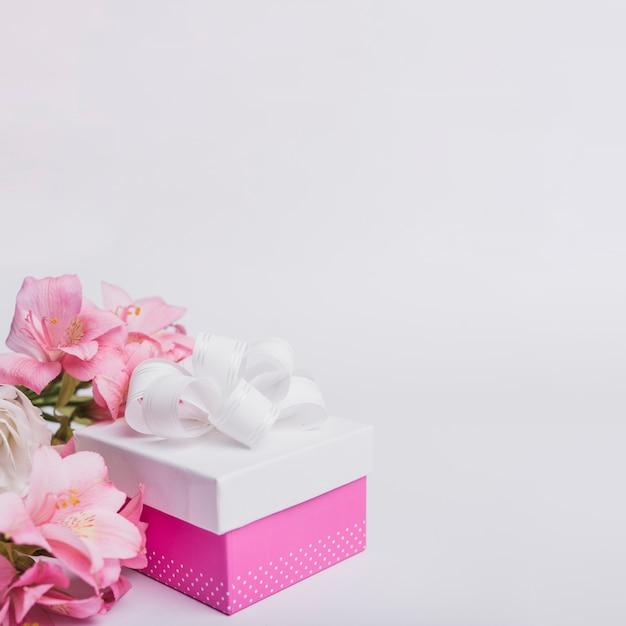 Mooie zoet waterlelie en verfraaid heden op witte achtergrond Gratis Foto