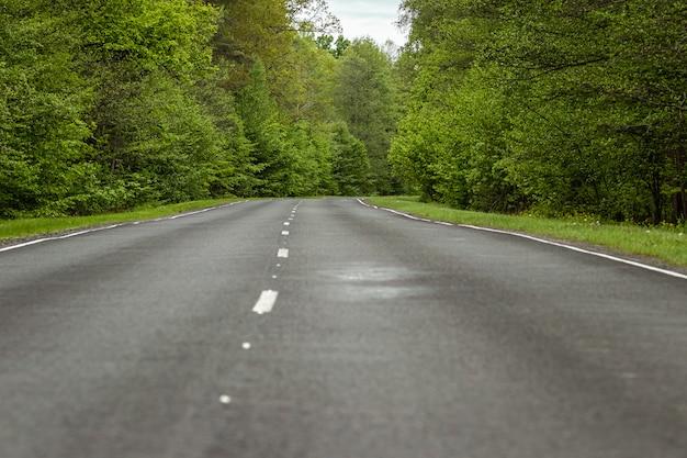 Mooie zomerse landschap groen bos en weg in het bos. Premium Foto