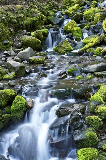 Mountain stream theme Gratis Foto