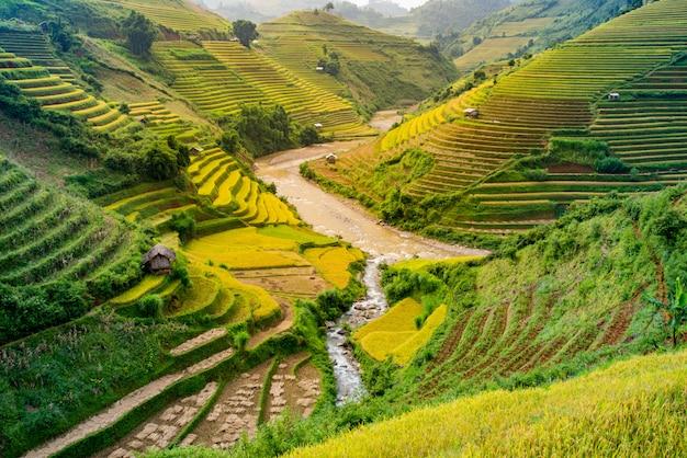 Mu cang chai, landschaps terrasvormig padieveld dichtbij sapa, noord-vietnam Premium Foto