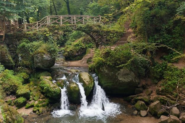 Mullerthal trail waterval in de regio mullerthal in luxemburg Premium Foto