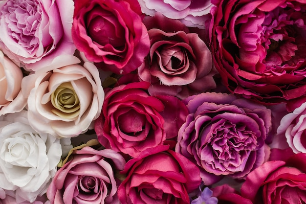 Muur van mooie rozen Gratis Foto