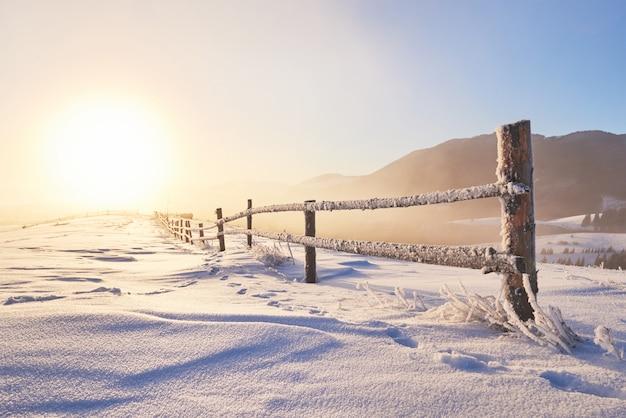Mysterieuze winterlandschap majestueuze bergen in de winter. magische winter besneeuwde boom. foto wenskaart. karpaten. oekraïne Premium Foto