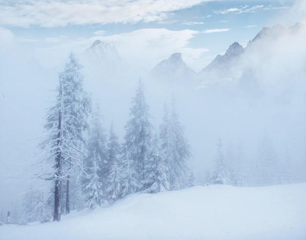 Mysterieuze winterlandschap majestueuze bergen in de winter. Gratis Foto